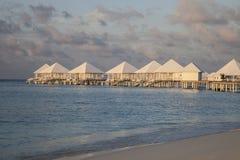 strand maldives Royaltyfri Fotografi