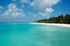 strand maldives Royaltyfria Bilder