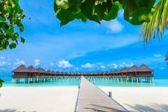strand maldives Royaltyfri Foto