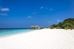 strand maldivian Arkivbild