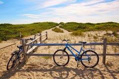 Strand Massachusetts USA för Cape Cod sillliten vik Arkivfoton