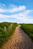 Strand Massachusetts USA för Cape Cod sillliten vik Arkivbilder