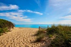 Strand Massachusetts USA för Cape Cod sillliten vik Royaltyfri Foto