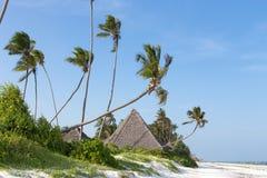 strand med bungalower i Zanzibar Arkivbild