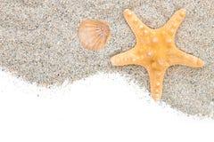 Strand med det sandsjöstjärnan och skalet Fotografering för Bildbyråer