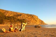 Strand med drivved Arkivfoto