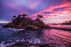 Strand med härlig himmel Royaltyfri Foto