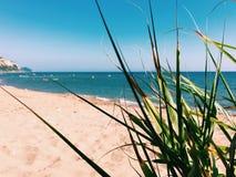 Strand med havet Royaltyfri Foto