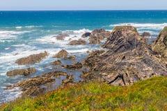Strand med klippor och vegetation i Almograve Arkivfoton
