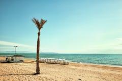 Strand med palmträdslags solskydd och chiringuito Arkivfoton
