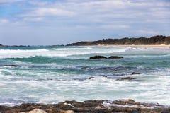 Strand med revar Royaltyfri Bild
