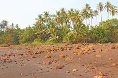 Strand med svart sand och palmträd Vulkanisk sand a för mörk brunt Royaltyfri Fotografi