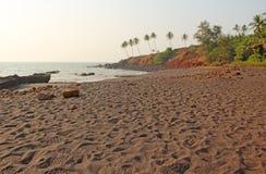 Strand med svart sand och palmträd Vulkanisk sand a för mörk brunt Fotografering för Bildbyråer