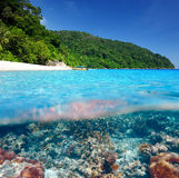 Strand med undervattens- sikt för korallrev Royaltyfri Fotografi