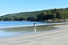 Strand med våt sand och redheaded gå för kvinna Det blåa havet med skummar, skogen och vaggar Blåttsky, solig dag Galicia Spanien arkivfoto