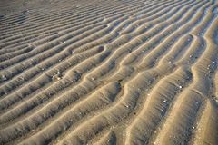Strand met geweven zand stock foto