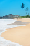 Strand met golven tegen rots en palmen in zonnige dag Stock Foto's
