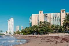 Strand met hotels en palm in Puerto Rico San Juan royalty-vrije stock afbeelding