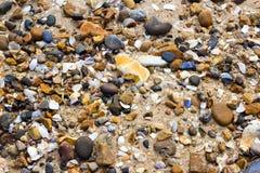 Strand met kiezelstenen en shells royalty-vrije stock afbeelding