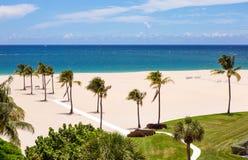 Strand met palmen Stock Foto