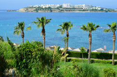 Strand met palmen in Bodrum Stock Foto's