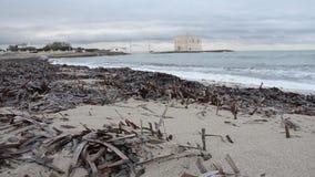 Strand met posidonia en overzees met golven in de winter stock video