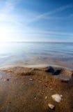 Strand met shells die in het Overzees beëindigen Stock Fotografie