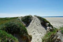 Strand met zandduinen en een weg aan het overzees Royalty-vrije Stock Fotografie