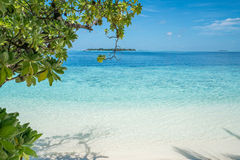 Strand mit Bäumen im Vordergrund lizenzfreie stockfotos