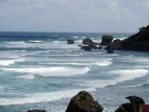 Strand mit Felsen Stockbild