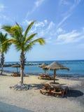 Strand mit Kanarischen Inseln der Palmen Lizenzfreie Stockfotografie