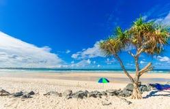 Strand mit Palme und Regenschirm Stockbilder