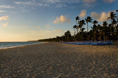 Strand mit Palmen mit blauen Sonneaufenthaltsräumen Stockbild