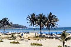 Strand mit Palmen und Booten auf Hintergrund Stockfoto