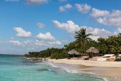 Strand mit Reedregenschirmen auf Insel in der Dominikanischen Republik stockfotografie