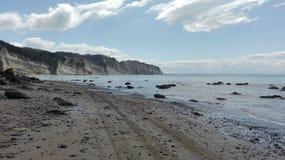 Strand mit Reifenbahnen Lizenzfreie Stockfotos
