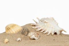 Strand mit Sand und Oberteilen Lizenzfreies Stockbild