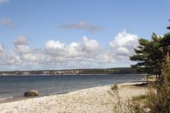 Strand mit Stein und Bäumen Lizenzfreies Stockbild