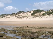 Strand in Mosambik Lizenzfreie Stockfotos