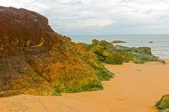 Strand nära Pedasi i Panama Royaltyfri Bild