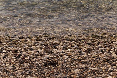 Strand Närbild adriatic hav Royaltyfria Foton