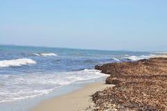 Strand nach Sturm Lizenzfreies Stockfoto