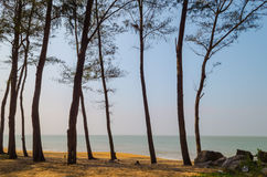 Strand nahe Ullal, Karnataka Lizenzfreies Stockfoto
