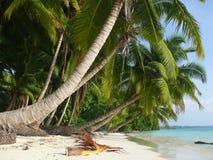 Strand nr 5, Havelock Eiland, Andaman Eilanden, Ind. Stock Foto's