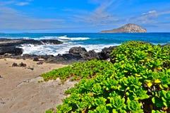 Strand in Oahu Royalty-vrije Stock Fotografie