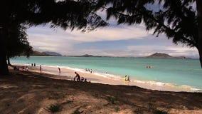 Strand Oahu, Hawaii (landskapet) lager videofilmer