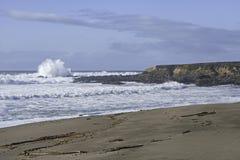 Strand och bränning på den Monterey fjärden Marine Sanctuary royaltyfri fotografi