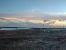 Strand och solnedgång royaltyfria foton