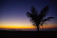 Strand och solnedgånghimmel Arkivfoto