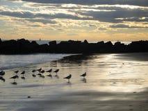 Strand och solnedgånghimmel New York Arkivfoton